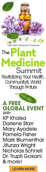 The Plant Medicine Summit will benefit anyone who is intrigued by the healing and evolutionary benefits of botanical medicine as well as professionals across multiple disciplines who work with herbs, plants, oils, energetics or the environment.
